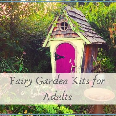 Fairy Garden Kits for Adults