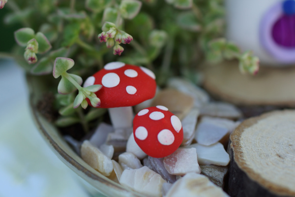 polymerclay toadstools in teacup fairy garden