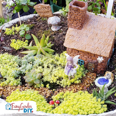 Make an Indoor Fairy Garden (it's different than an outdoor garden!)