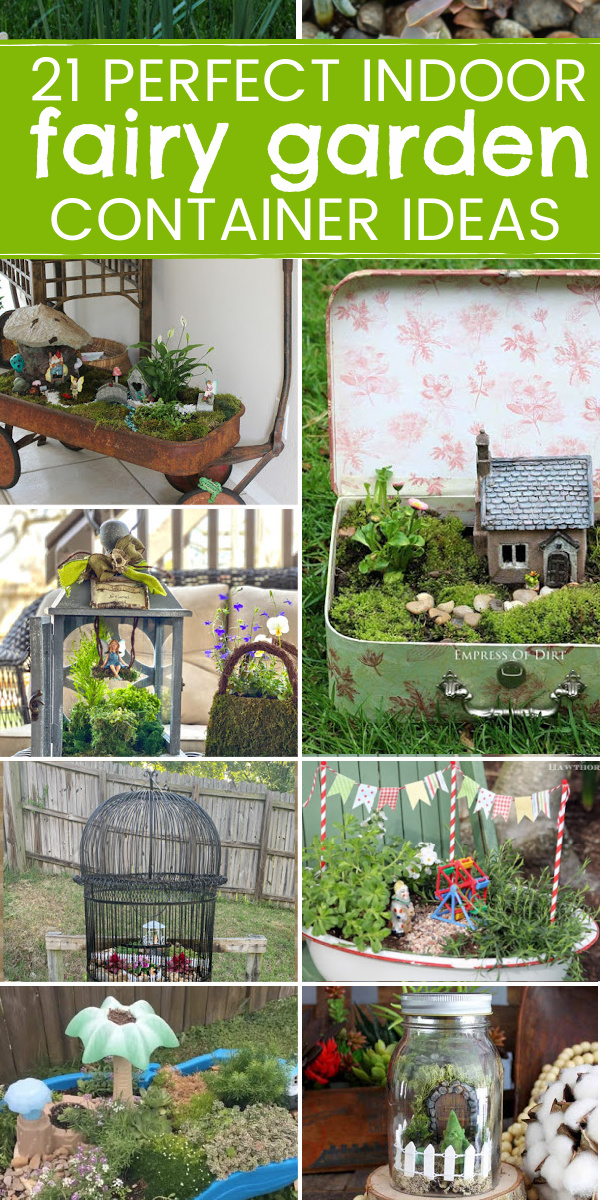 Indoor fairy garden container ideas