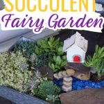 succulent fairy garden in a wheel barrow