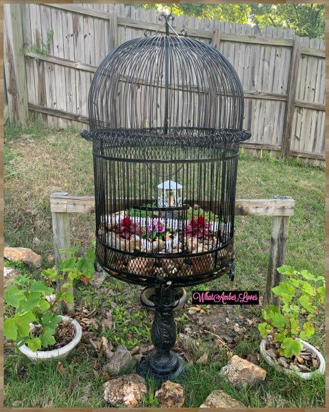 fairy garden in a birdcage