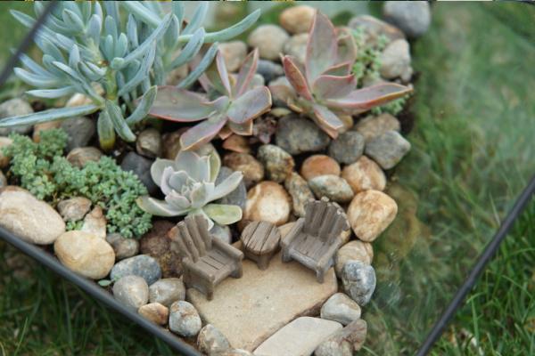 indoor fairy garden planter: terrarium