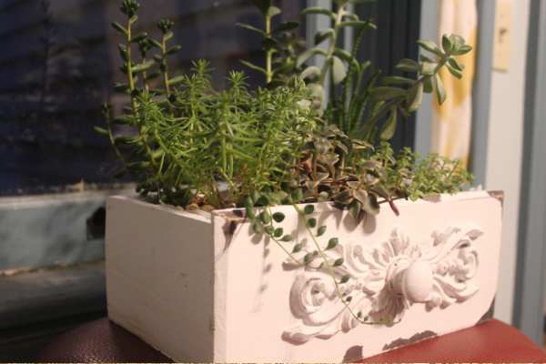 old drawer a planter idea