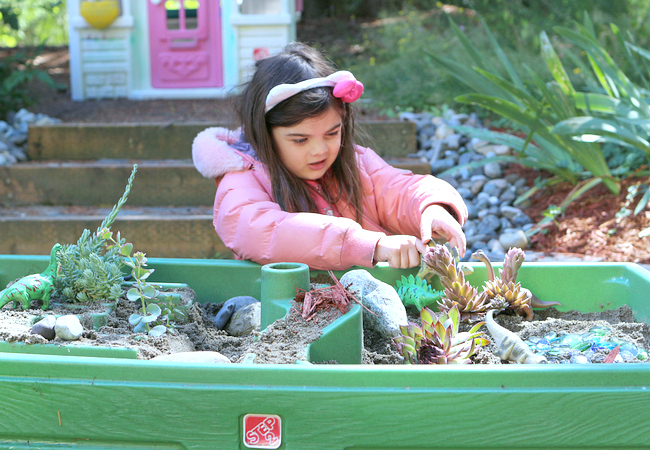 outdoor fairy garden contain ideas
