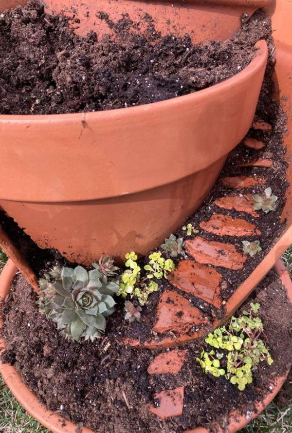 adding plants to a broken terracotta pot fairy garden
