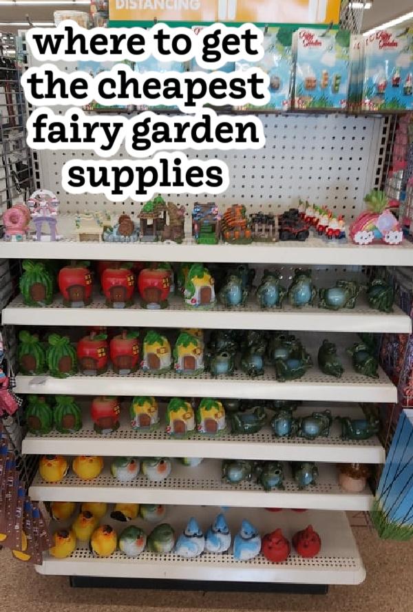 places to get cheap fairy garden supplies